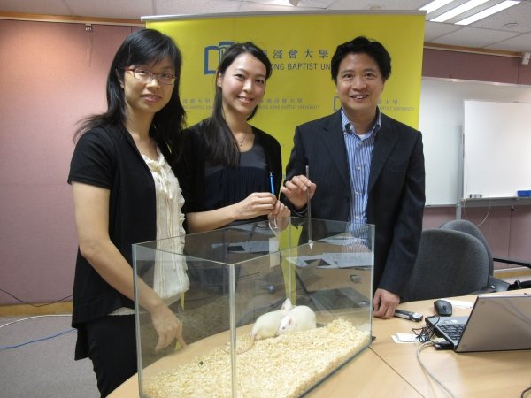 (From left) Dr. Li Hung-wing, Associate Professor of the Department of Chemistry, Dr. Cathy Lui, Post-Doctoral Research Fellow, and Professor Ken Yung, Professor of the Department of Biology, hope that the novel technique could be applied to the treatment of neurological problems such as Parkinson's disease.