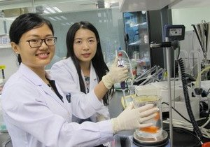 Chinese medicine PhD students win Dragon Culture TCM Scholarship