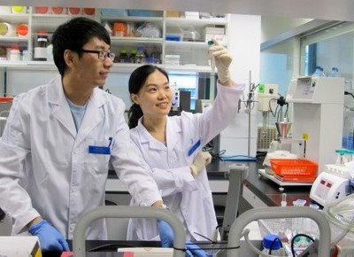HKBU ranks first in Greater China for its published research about Chinese medicine