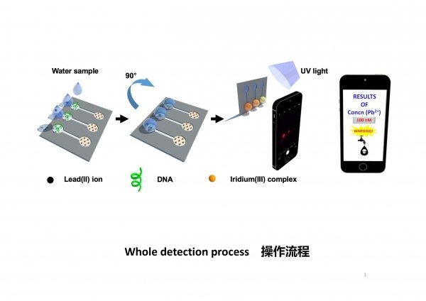The diagram shows the detection process.