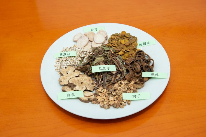 The JCM-16021 contains Rhizoma Atractylodis Macrocephalae (白朮), Radix Paeoniae Lactiflorae (白芍), Cortex Magnoliae Officinalis (/厚樸), Semen coicis Lachryma-jobi (薏苡仁), Polygonaceae (火炭母), Fructus Terminaliae Chebulae (訶子) and Rhizoma Corydalis Yanhusuo (延胡索)