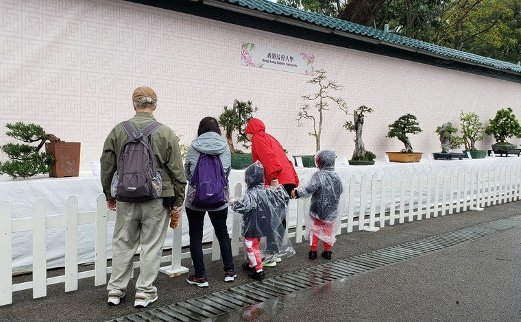 The penjing exhibits from the Man Lung Garden attract visitors