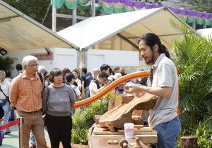 Visual Arts students showcase wood sculptures at Flower Show