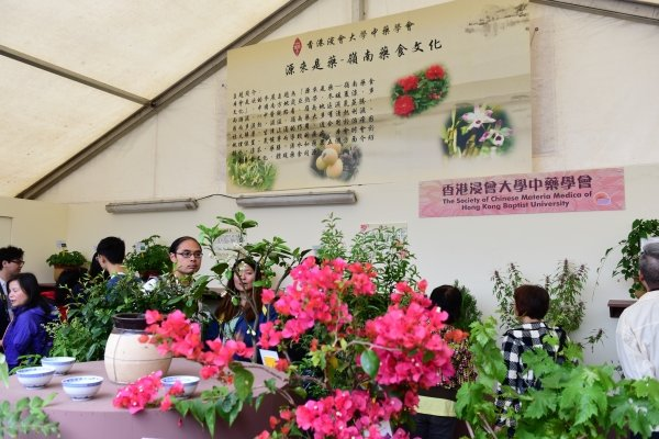The Society of Chinese Materia Medica showcases a variety of plants commonly found in southern China at the exhibition