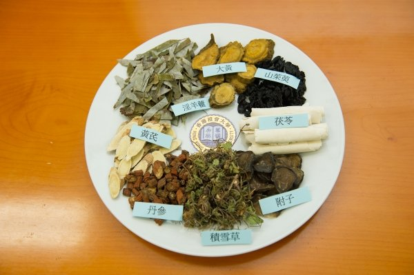 Traditional Chinese medicine for the treatment of chronic renal failure