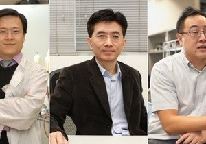 Three Chemistry scholars listed in Nature Index 2014 China